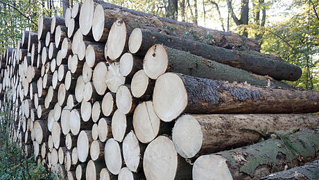 age_vh_holz_258_030419